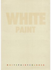 Декоративна мазилка WHITE PAINT Colored